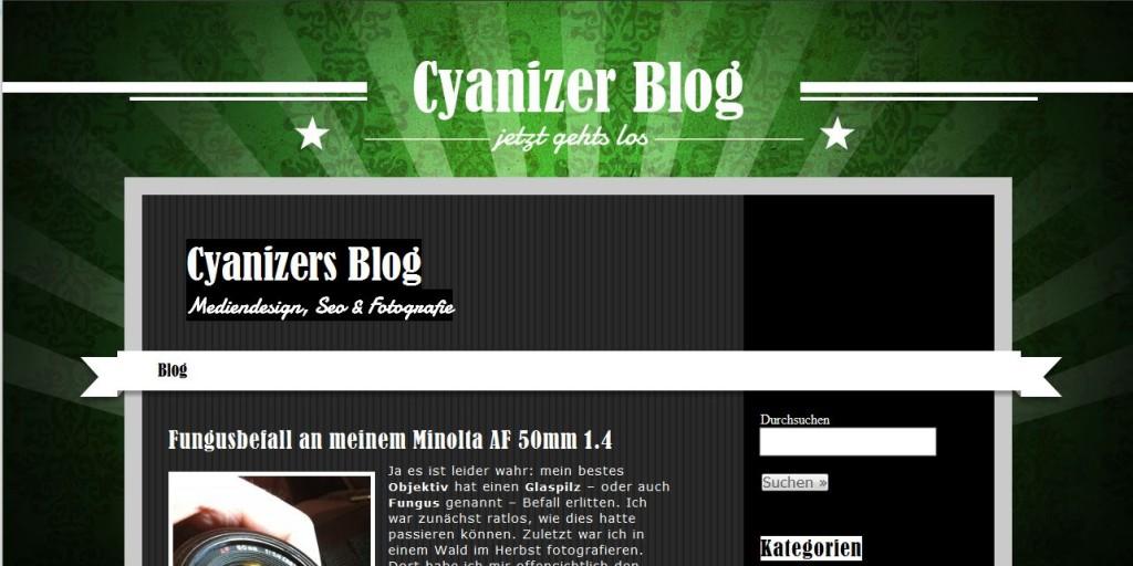 Die Seite mit dem ersten eigenen WordPress Theme. Der Blogcharakter wird nun deutlicher.