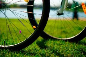 Fahrräder am Horstmarer See